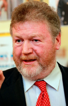 Children's Minister James Reilly led calls for a referendum on the Eighth Amendment Photo: Frank Mc Grath