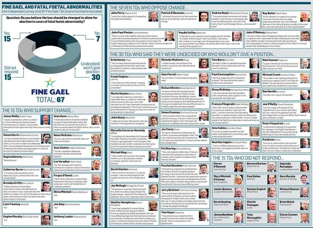 <a href='http://cdn-01.independent.ie/incoming/article34351322.ece/69ac8/binary/NEWS-FG-8th-Amendment.jpg' target='_blank'>Click to see a bigger version of the graphic</a>