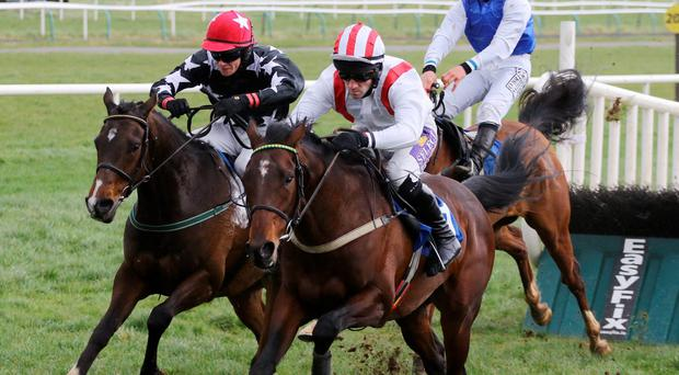Cliff House and Brian O'Connell beating Maguire's Glen at Limerick last March – Leopardstown is the target this Sunday (Alain Barr)