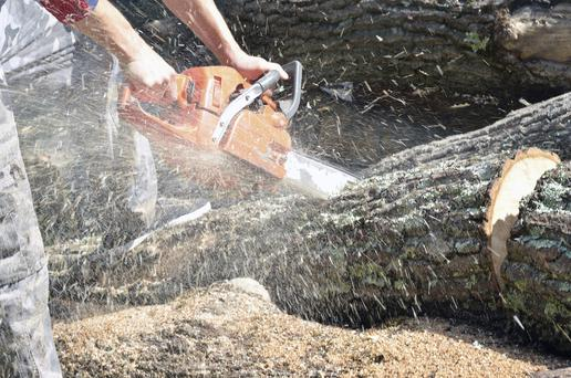 John Masterson: For a man a few hours with a chain saw is the equivalent of a woman going on a girlie weekend.