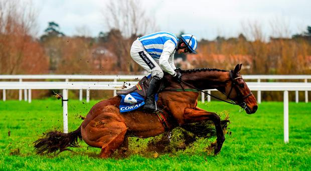 Killultagh Vic stumbles after jumping the last, but Ruby Walsh managed to stay in the saddle and drive the horse to victory at Leopardstown. Photo: Stephen McCarthy / SPORTSFILE