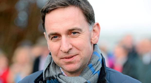 Sempre Medici, successful at Naas on Saturday, completes the champion trainer's quartet, with Henry de Bromhead's progressive Identity Thief (as low as 10/1 fourth favourite) the only other potential raider as of now (SPORTSFILE)