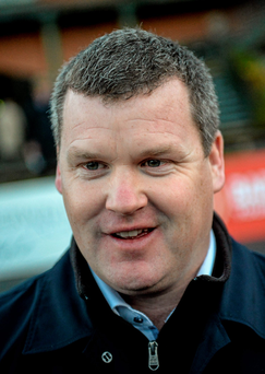 Gordon Elliott: Four runners (SPORTSFILE)