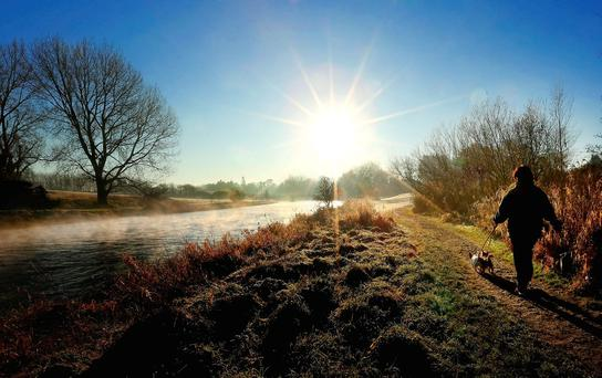 Maria Lawlor and her dogs enjoy the crisp morning sunshine along the banks of the River Boyne in Trim, Co Meath, yesterday. Photo: Gerry Mooney