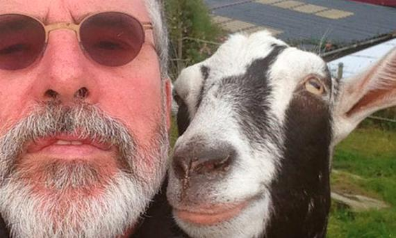 Gerry Adams' goat selfie
