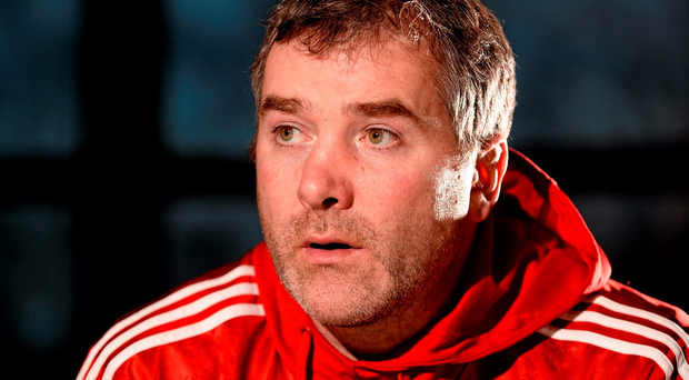 Anthony Foley insists his side remained motivated after recent setbacks Photo:Sportsfile