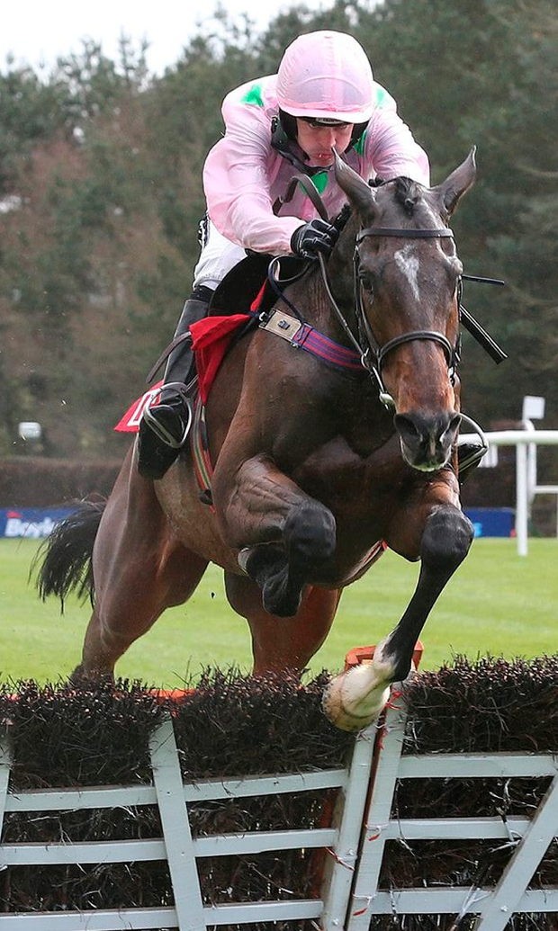 Douvan: can cruise to victory in tomorrow's Arkle Photo: Caroline Norris