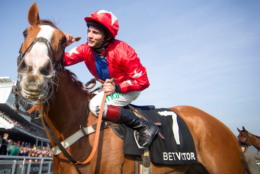 Sire De Grugy and Jamie Moore are fancied in today's Clarence House Chase at Ascot Photo: Patrick McCann