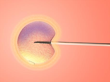 A test which tells women if they are unlikely to get pregnant through IVF could spare years of heartache