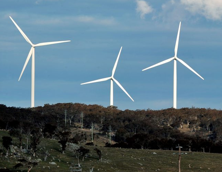 'We have abundant renewable energy, water and land resources for the size of our population, so we have everything to gain by going green' Photo: Mark Graham/Bloomberg