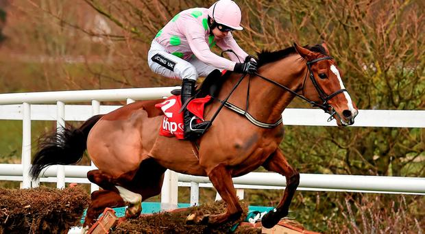 The Willie Mullins-trained Faugheen, under Ruby Walsh, clatters his way through the final flight on the way to a bloodless victory in the BHP Insurances Irish Champion Hurdle at Leopardstown yesterday. Below: Owner Rich Ricci, who also saw Douvan claim the Irish Arkle in his familiar pink colours, celebrates his good fortune. Photo: Brendan Moran / Sportsfile