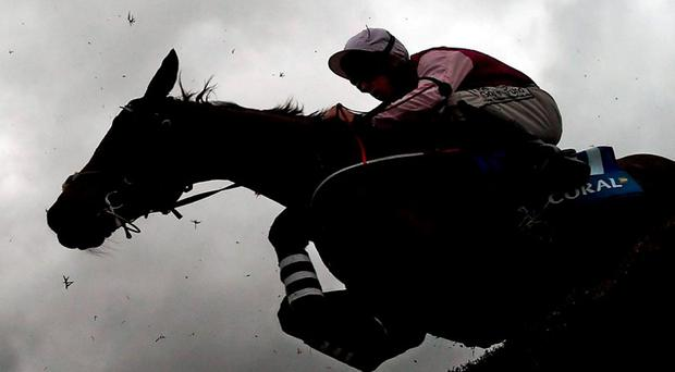 Dark clouds are hovering over the country's national hunt game judging by the latest figures for the industry. Photo: Stephen McCarthy / Sportsfile