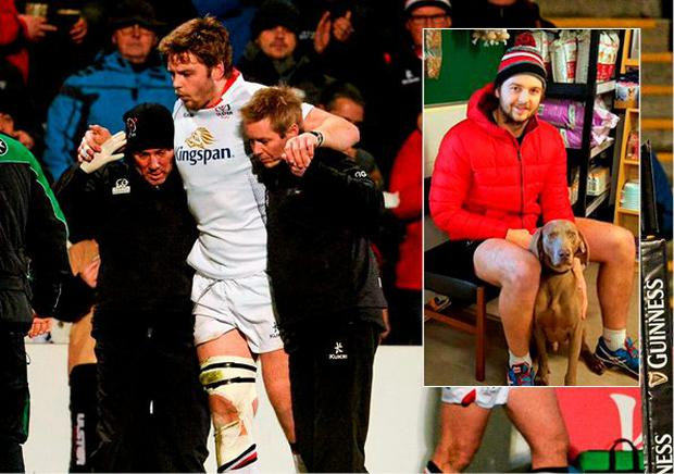 Iain Henderson has recruited a dog to help him get fit