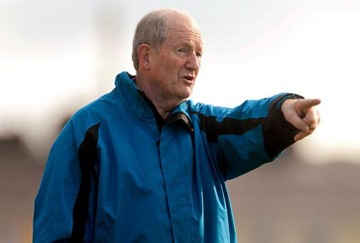 Mary Immaculate College manager Eamon Cregan. Photo: Sportsfile