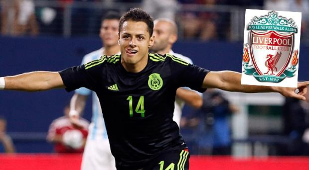 Liverpool have been linked with a move for Javier Hernandez