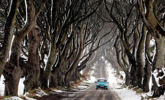 A car drives during snowy conditions along the Dark Hedges tree tunnel, which was featured in the TV series Game of Thrones, near Ballymoney in Antrim, Northern Ireland, on January 14, 2015. Photo: AFP/Getty Images