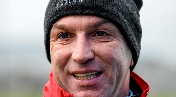IT Carlow manager DJ Carey. Photo: Sportsfile