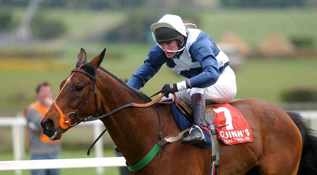 Risk of Thunder, with JT McNamara up, passes the finishing line to win the the La Touche Cup at Punchestown in 2002