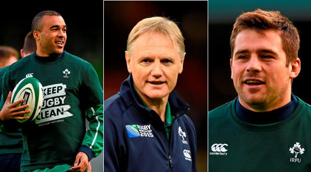 Joe Schmidt looks set to call on CJ Stander and Simon Zebo for Wales test