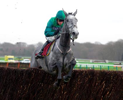 Daryl Jacob will be hoping to partner giant grey Bristol De Mei to another victory at Sandown this afternoon Photo: Martin Lynch