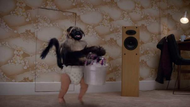 The puppy/monkey/baby from this year's Super Bowl ads