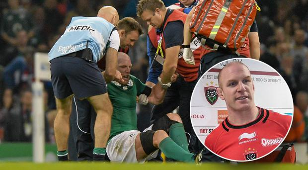 Paul O'Connell has yet to return from the hamstring injury he suffered last October