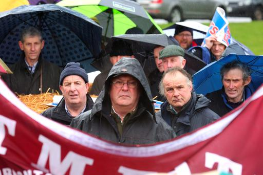 IFA members brave the conditions to protest outside the Slaney Meats factory in Wexford last Sunday. Photo: Finbarr O'Rourke.