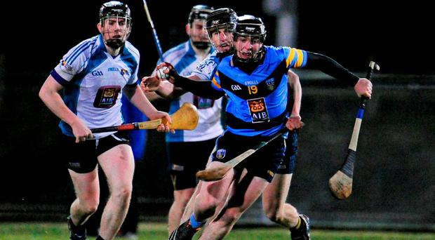 UCD's Padraic Guinan in action against David Hennessy of Maynooth University in the Independent.ie HE GAA Fitzgibbon Cup, Group A, Round 3,