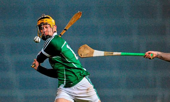 Tom Morrissey, Limerick. Allianz Hurling League, Division 1B, Round 1, Limerick v Wexford. Gaelic Grounds, Limerick. Picture credit: Sam Barnes / SPORTSFILE