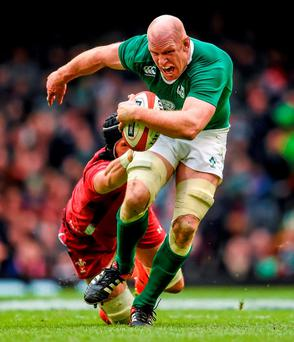 Paul O'Connell could have suffered a career-ending injury long before the nation fell in love with him. Photo: Stephen McCarthy / Sportsfile
