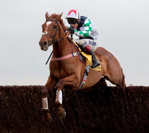 Top Gamble, ridden by Richard Johnson, clears the last fence before going on to win the Betfair Exchange Chase at Newbury. Photo: Julian Herbert/PA Wire.