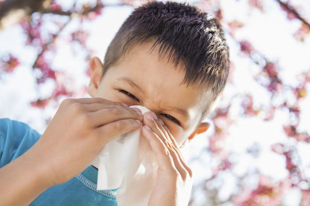 Hay fever symptoms can occur for some all year round. Photo: Getty Images.