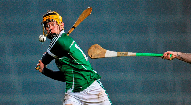 Limerick's Tom Morrissey in action Photo: Sportsfile