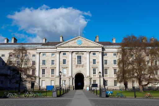 Researchers from Trinity College Dublin, above, and St James's Hospital examined how our immune system responds to TB