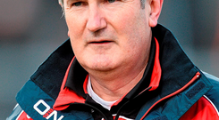 New Cork manager Kieran Kingston had been appointed ten weeks previously, giving him plenty of time to prepare for the new season: David Maher / SPORTSFILE