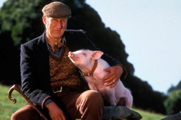 James Cromwell turned vegan after starring in 1995's Babe