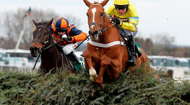 Triolo D'alene and Barry Geraghty winning Aintree's Topham Trophy in 2013 – a repeat of that effort at Ascot today can see him oblige under Jerry McGrath (Getty Images)