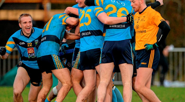 University College Dublin players celebrate at the final whistle as a dejected Cian Brehany, Dublin City University, watches on. Picture credit: Oliver McVeigh / SPORTSFILE