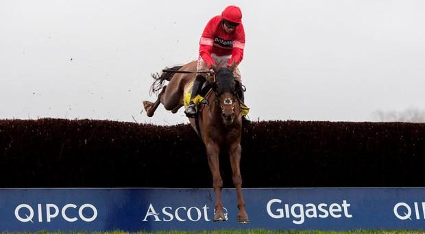 Silviniaco Conti ridden by Noel Fehily clears the last fence before going on to win The Betfair Ascot Chase yesterday Photo: Julian Herbert/PA Wire
