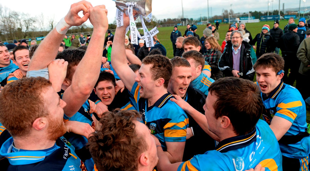 UCD celebrate winning the Sigerson Cup last year
