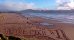 Michael Pixie O'Gorman's campaign team created a video with a difference