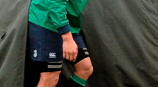 Dillane: Hoping to make impression Photo: David Maher / SPORTSFILE