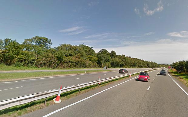 The dog had been running loose on the A55, file picture, at varying locations Photo: Google