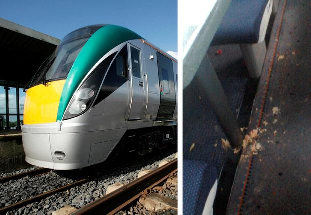 Irish Rail said they found vomit and other fluids throughout the train