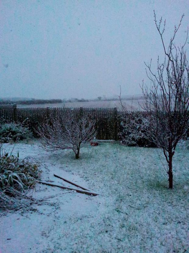 Snow in East Cork Credit: Twitter/John Leonard