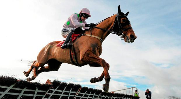 Annie Power, with Ruby Walsh up, on his way to winning her seasonal reappearance at Punchestown last month