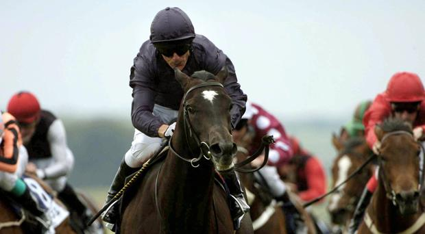 Aussie Rules winning his maiden at the Curragh in 2005
