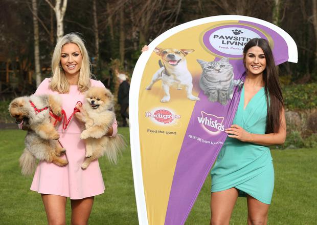 Rosanna Davison with her two Pomeranian pooches Leo and Ted, and Lynn Kelly, pictured at the launch of Pedigree and Whiskas Ireland's Pawsitive Living campaign. Photo: Robbie Reynolds