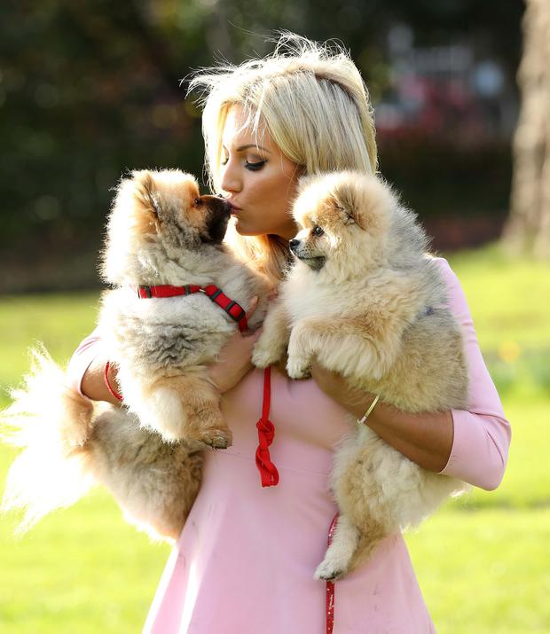 Rosanna Davison with her two Pomeranian pooches Leo and Ted, pictured at the launch of Pedigree and Whiskas Ireland's Pawsitive Living campaign. Photo: Robbie Reynolds