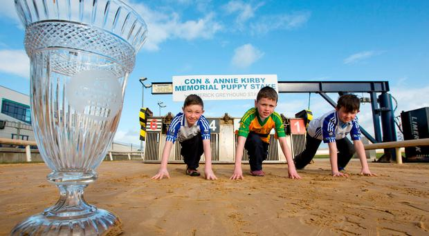 Ben O'Mahony (Croom), Cian Browne (Ballylanders) and Aidan O'Dwyer (Croom) quick out of traps to support their clubs for the €20,000 GAA nominators prize on offer for the Con and Annie Kirby Memorial, which begins in Limerick on March 12 (Sean Curtin/FusionShooters)